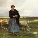 La pecorella