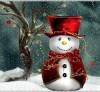 pupazzo-di-neve ridotto
