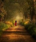 Giovane cammino