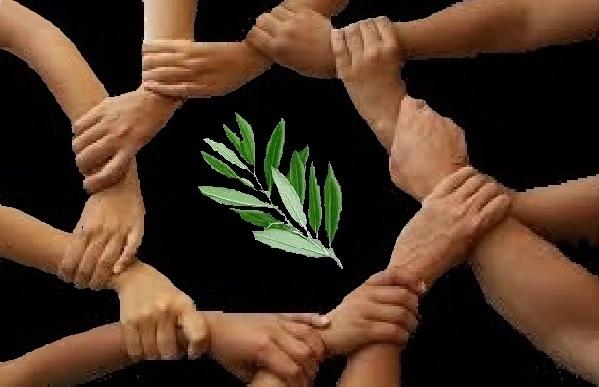 ramoscello di ulivo