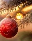 Strenne natalizie