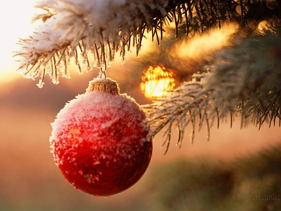 strenne-natalizie